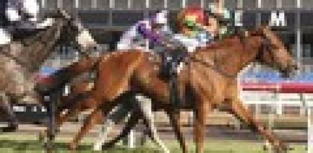 Just 'one more sleep' for Happy Trails and Beshara