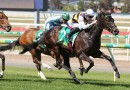 Ballarat Cup favourite scratched from field