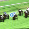 Calaway Gal Stakes results and replay – 2019