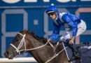 Another sibling of Winx won't make it to the races