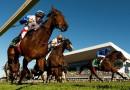 Doomben 10,000 in world's top 100 races