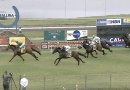 60 start maiden could produce feel good story