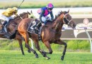 Carbine Club Of WA Stakes a wide open betting race