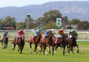 South Australia set to resume racing