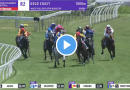 Magic Millions Open Handicap results and replay – 2021