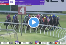 Magic Millions Fillies and Mares results and replay – 2021