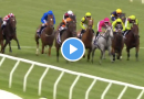Kensington Stakes results and replay – 2021