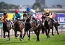 Shaquero to be aimed at the Golden Slipper