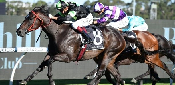 Private Eye to be aimed at the $7.5m Golden Eagle