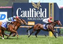 Leading contender late scratching in Australian Guineas