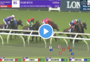 Guy Walter Stakes results and replay – 2021