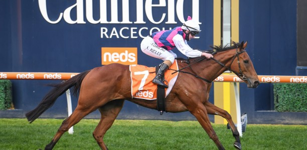 King could be a surprise runner in Sir Rupert Clarke Stakes